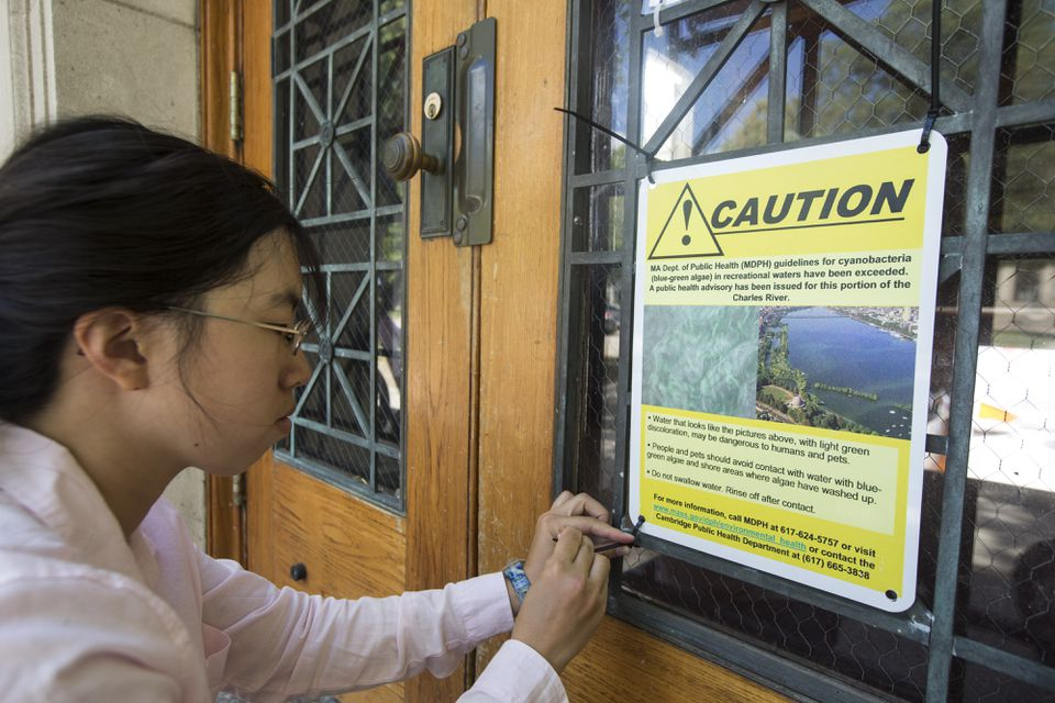 Public health intern Michelle Kwock hung a sign warning of possible high algae levels on the door of the MIT Sailing Pavillion.
