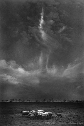 """Sheep Under Clouds,"" a 1961 image Feinstein created from a sheep photo taken in Ringoes. N.J., and clouds from Coney Island."