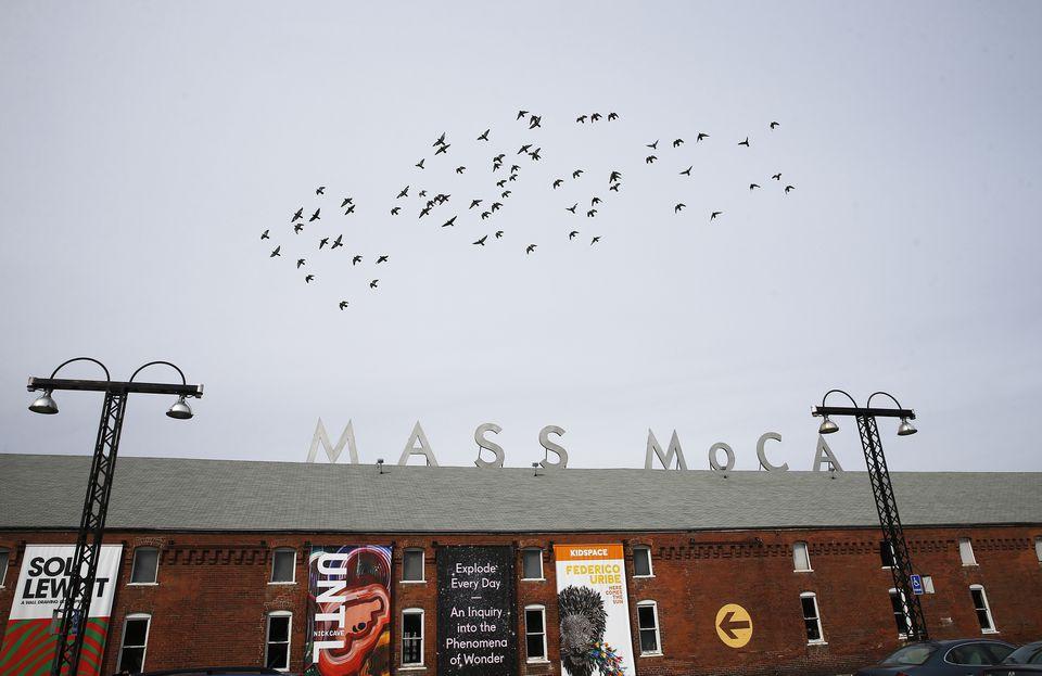 Fifteen new installations will open May 28 at MASS MoCA.