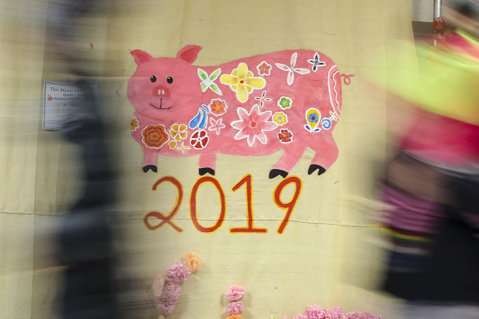 The walls of North Quincy High School were adorned with images of pigs, Chinese symbols of the new year.