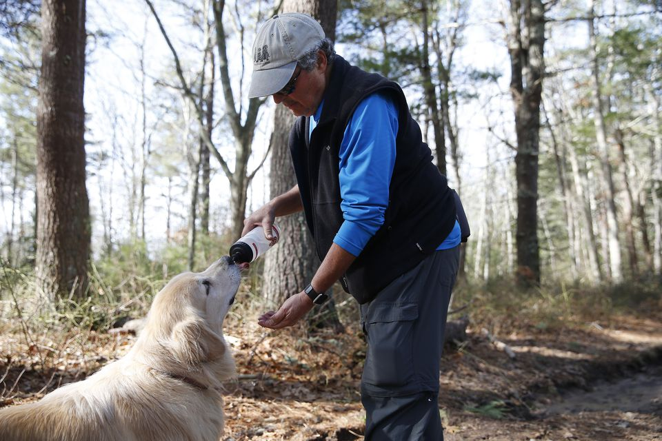 Kligler stopped to give his dog, Bodie, a drink of water during a hike in the Falmouth woods.