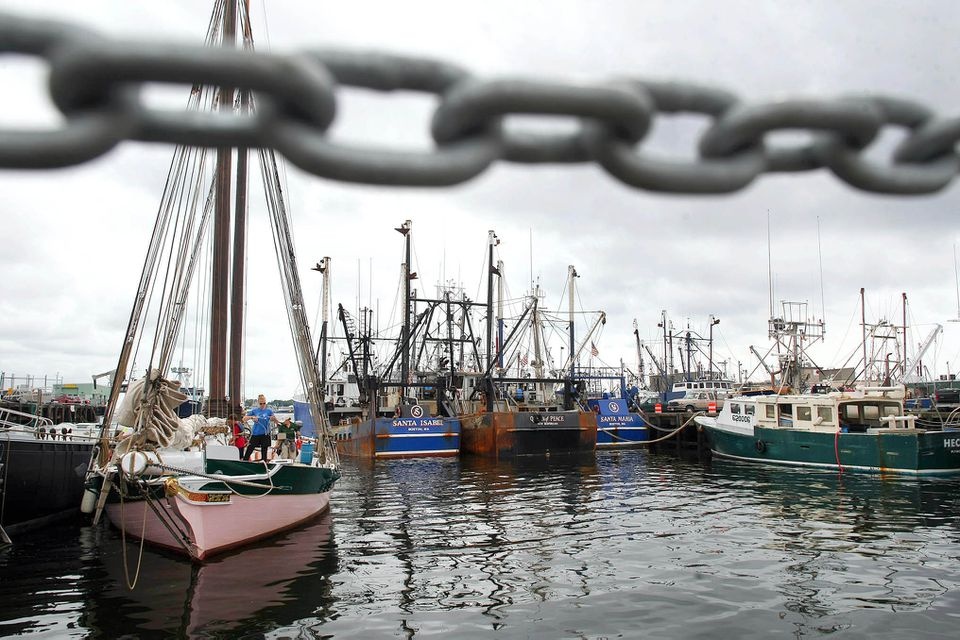 Fishing boats and the schooner Lady Maryland (left) at Steamship Pier in New Bedford Harbor in 2012.