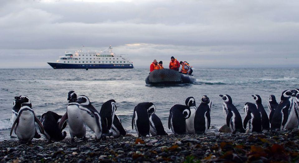 Passengers approach Magdalena Island.