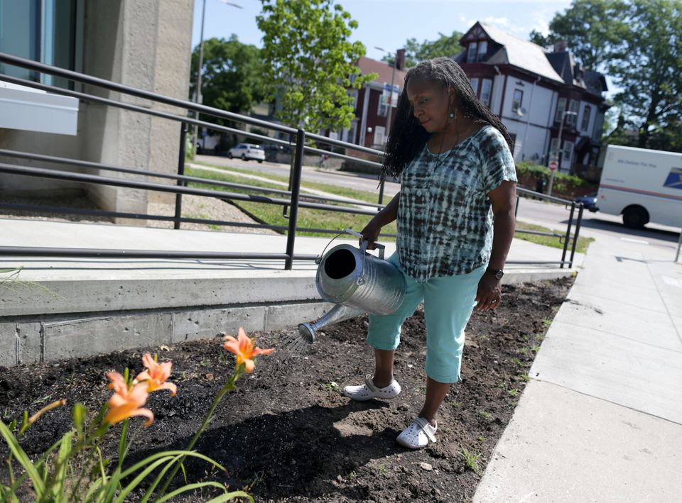 Ekua Holmes has launched the Roxbury Sunflower Project and hopes to plant 10,000 sunflowers in the neighborhood. She watered the beds after planting seeds outside of the Freedom House.