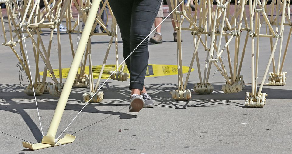 The wind-powered Strandbeest was helped along by a person due to lack of breeze.