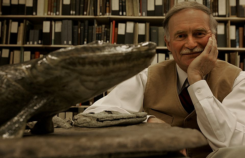 """Dr. Jenkins after describing a """"missing link"""" fossil, a fish with legs called Tiktaalik roseae."""