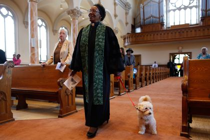 Service dogs barred, doubted, and deeply treasured - The Boston Globe