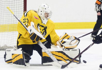 Boston Pride In The Hunt For Another National Women S Hockey League