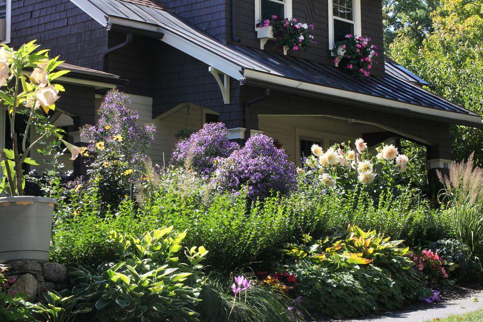 A flower-filled front yard on Worcester's West Side.