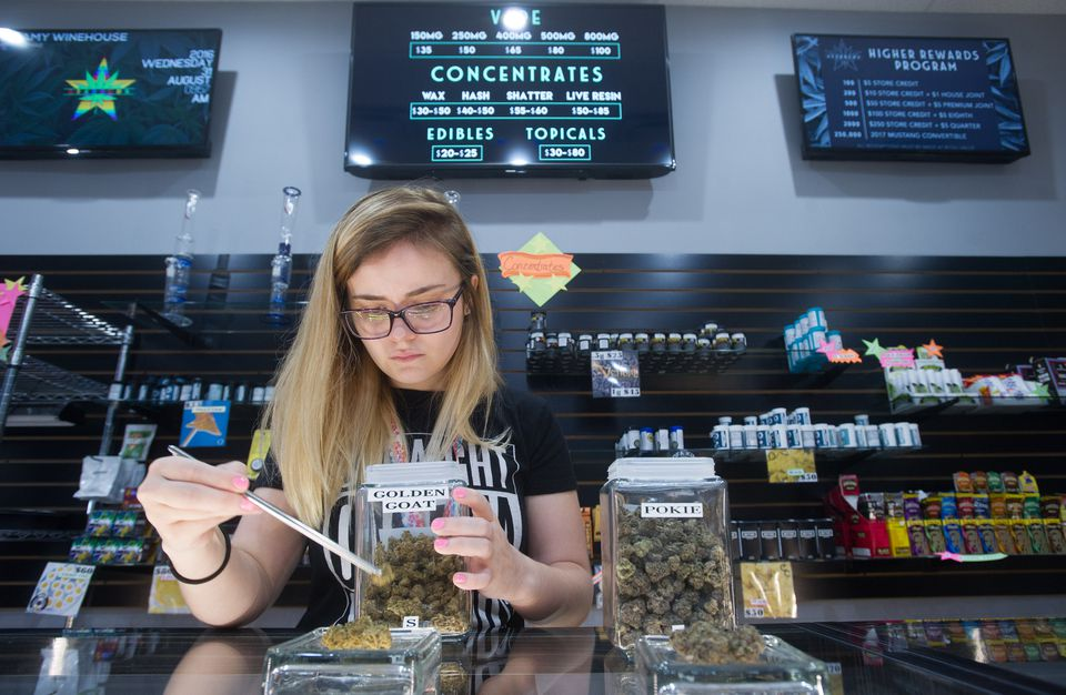 An employee laid out a display of manicured marijuana buds at the Pueblo West Starbuds dispensary.