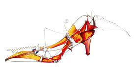 An example of shoe art from Jane Gershon Weitzman's book.