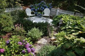 Tom Strangfeld's garden in East Harwich is 20 by 30 feet, framed by a white picket fence, and purposely low maintenance.