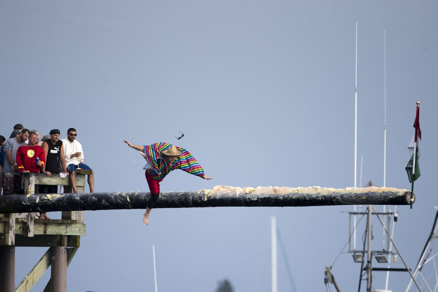 A man slips and falls off the greasy pole during the competition Sunday.