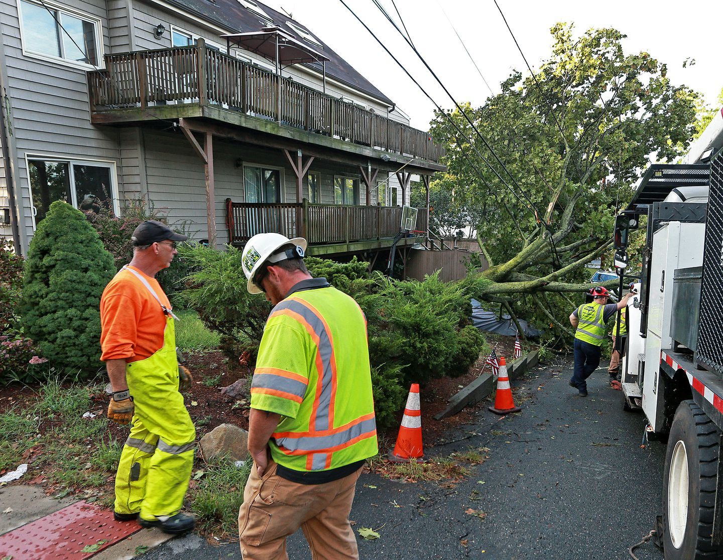 A tree fell on power lines on the corner of Winter Street and Riverside Park.