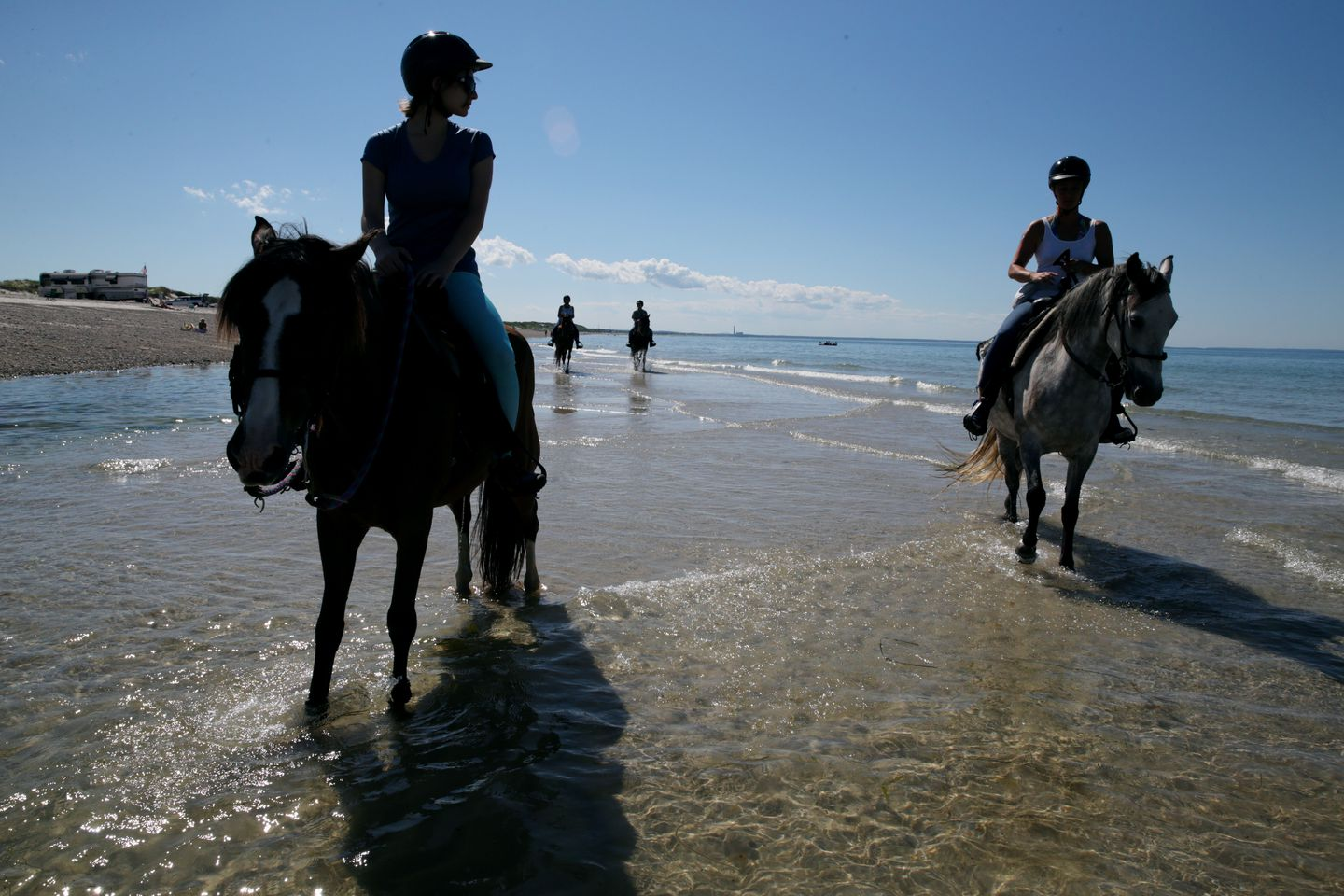 A tour of Sandy Neck Beach in Barnstable led by Esperanza Riding Company.