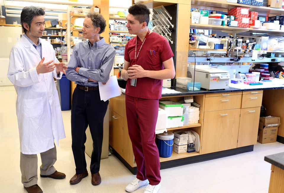 Dr. Bruce Yankner, center, spoke with genetics instructor Tao Lu, left, and post-doc fellow Liviu Aron. They are part of a team of Harvard Medical School researchers that discovered a protein that protects the aging brain.