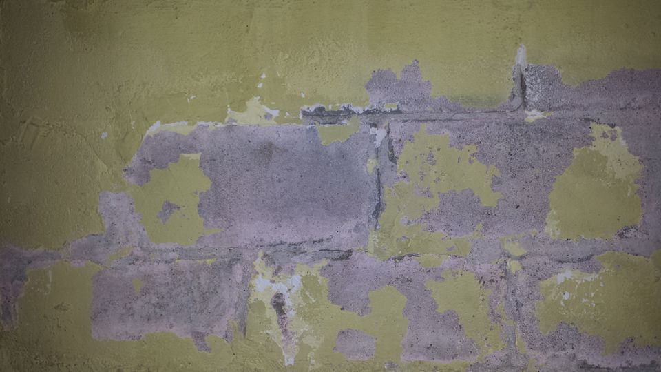 I Never Advise Painting Bat Walls Even With Epoxy Paint Contractor Rob