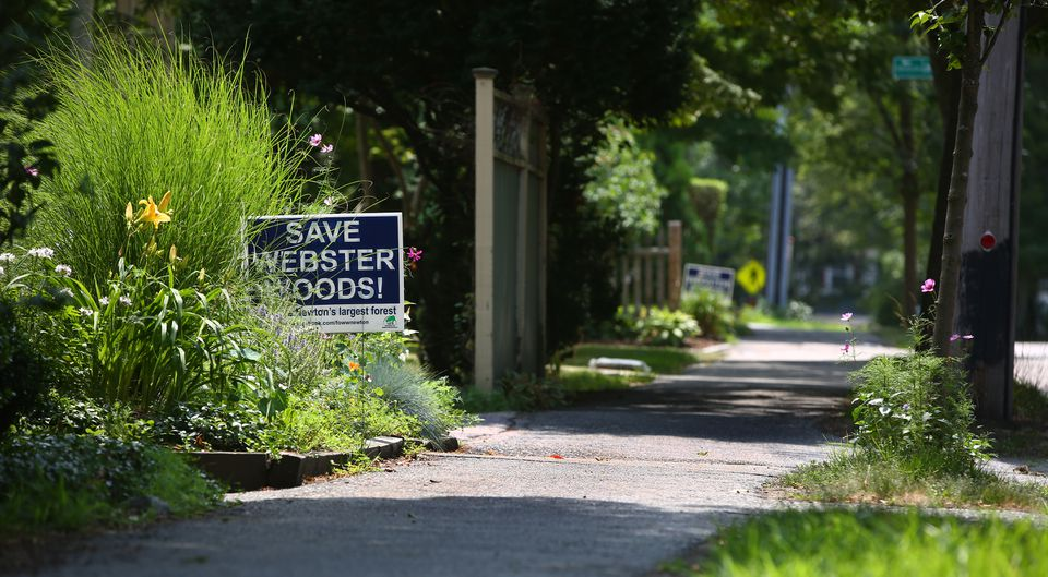 """Save Webster Woods"" signs were planted on lawns after Boston College reached a deal to buy the tract."