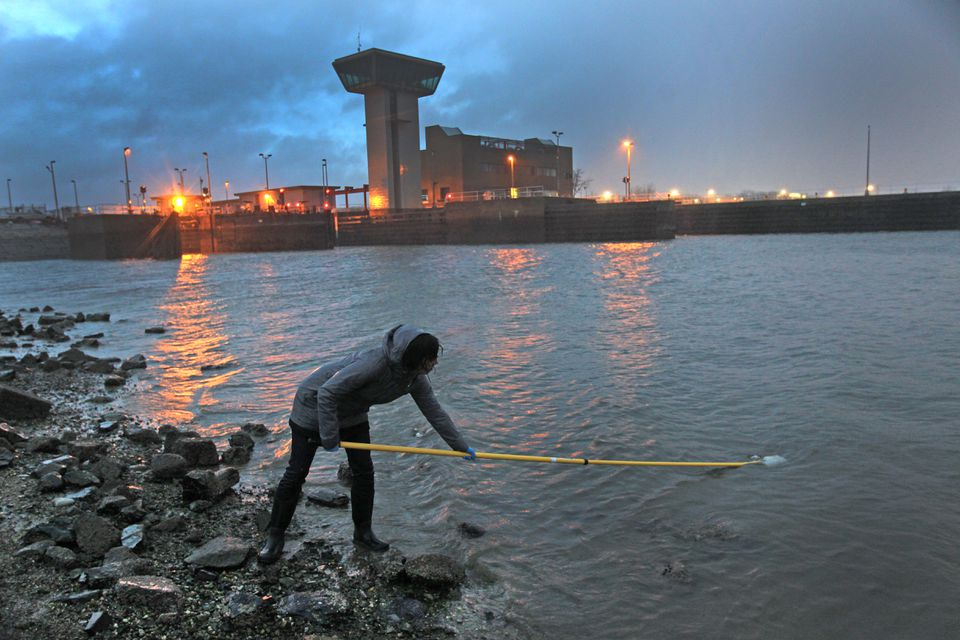 Water samples were taken one morning last month from the Mystic River in Somerville near the Amelia Earhart Dam.