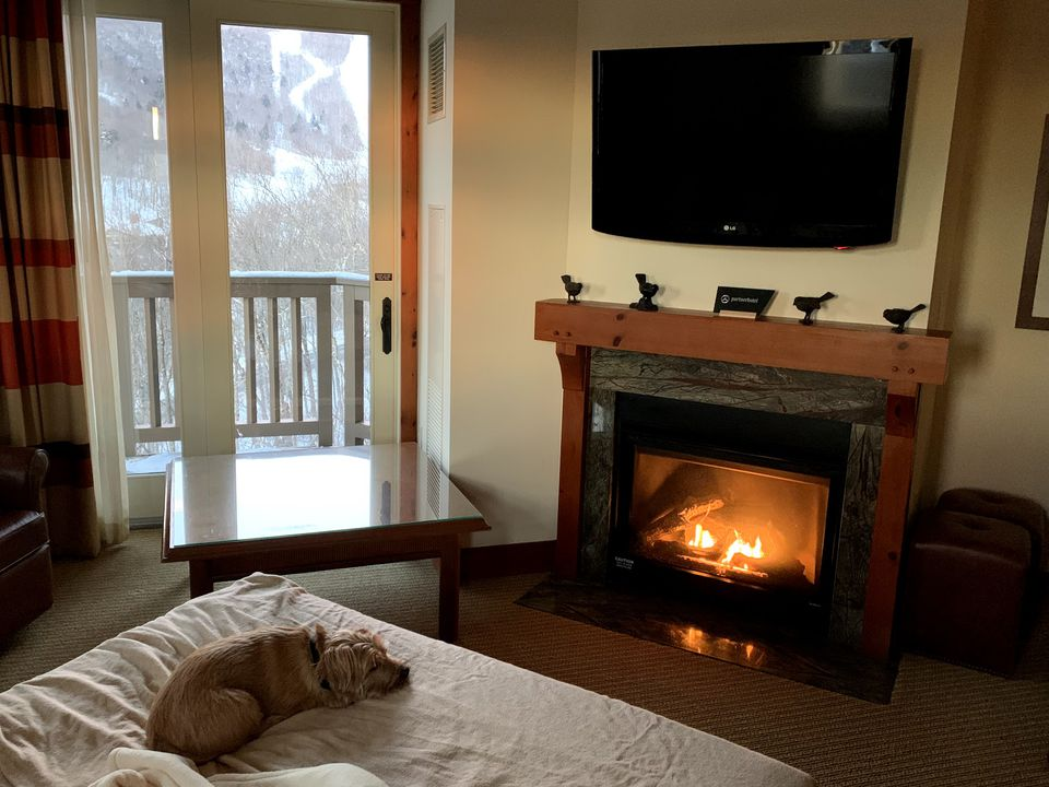 A dog-friendly guest suite in the main hotel.
