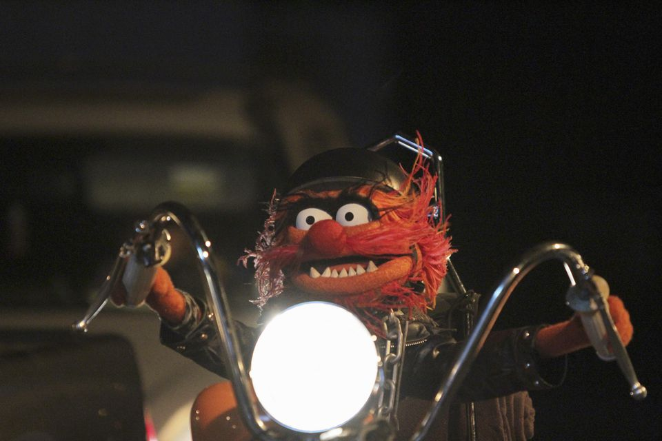 """Animal from """"The Muppets."""""""