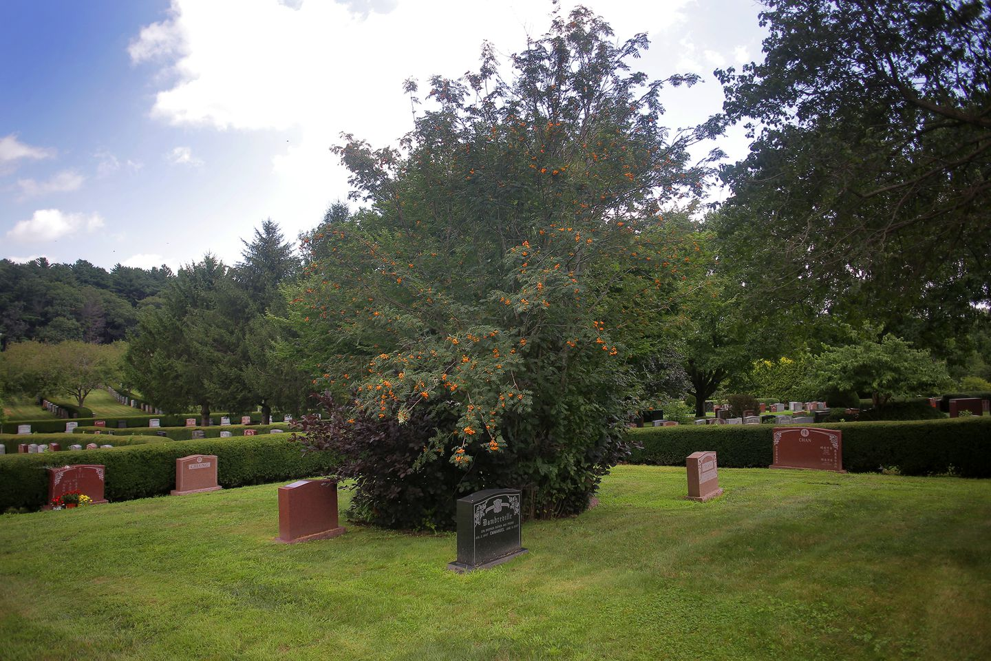 Reggie Lewis's grave, which is between the two markers near the bush, remains without a headstone.