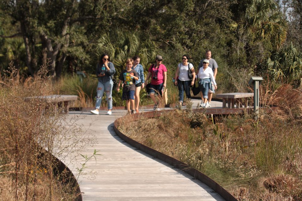 A 170-foot boardwalk winds its way through the Wild Garden, a new 8-acre area showing the diversity of native plants and ecosystems at Bok Tower Gardens.