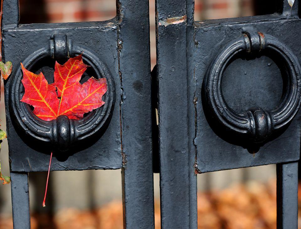 A gate at Harvard University in Cambridge.