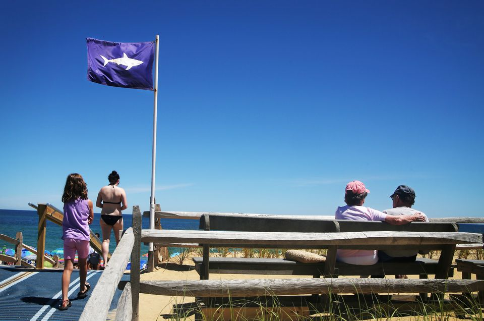 Beachgoers walked past a flag warning swimmers of potential sharks on Nauset Beach.