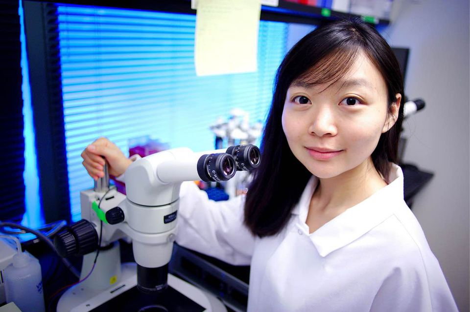 """""""The vision of the company is to create a world where there is no wait for organ transplantation,"""" says eGenesis chief scientific officer Luhan Yang."""