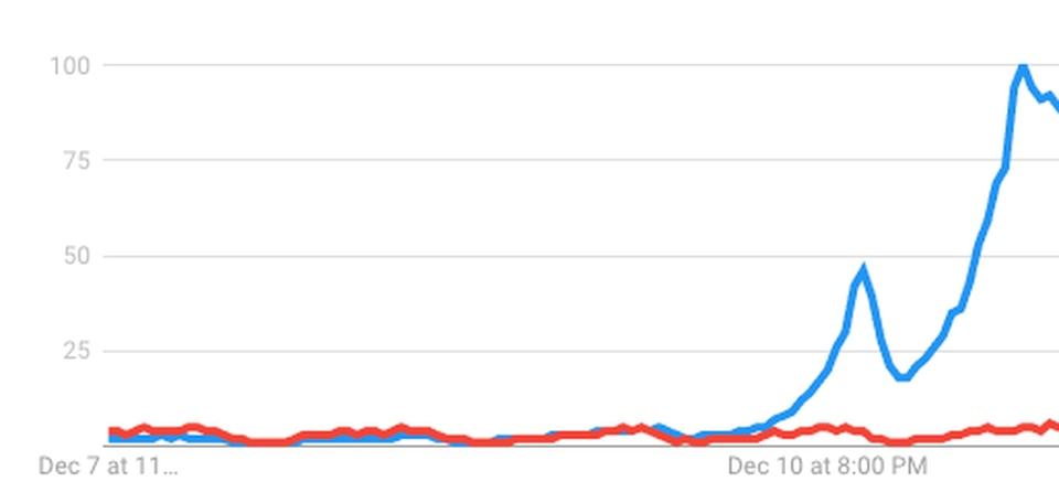"""Searches for """"dog person"""" (in red) were dwarfed by searches for """"cat person."""""""