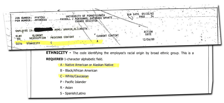 Ethnicity not a factor in Elizabeth Warren's rise in law