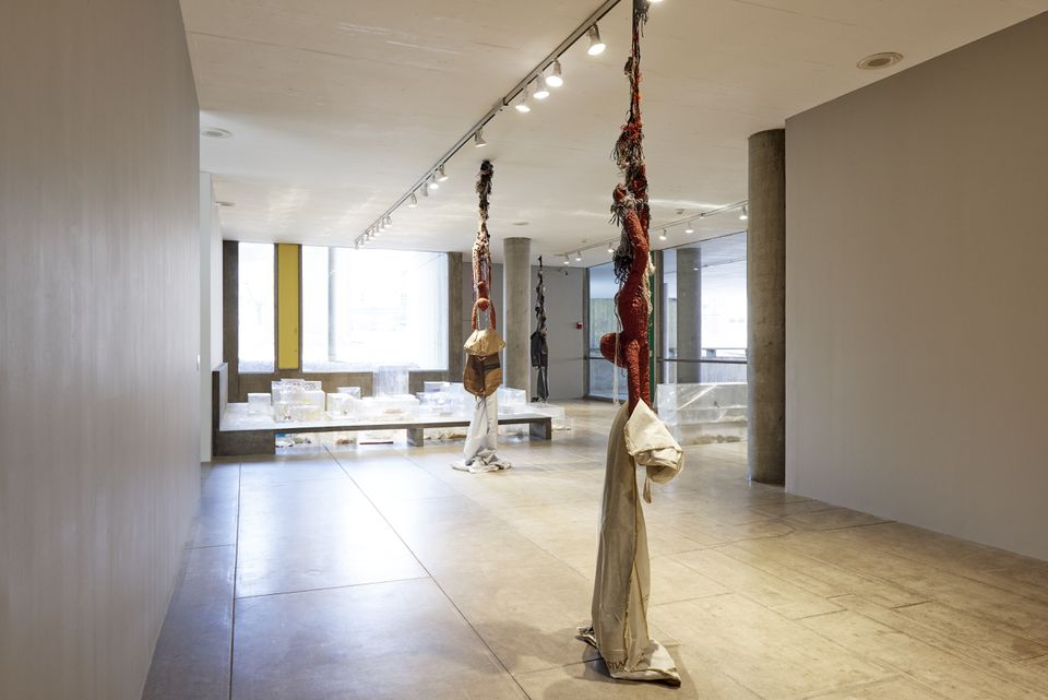 """""""Blowout"""" is at the Carpenter Center for the Visual Arts through March 24."""