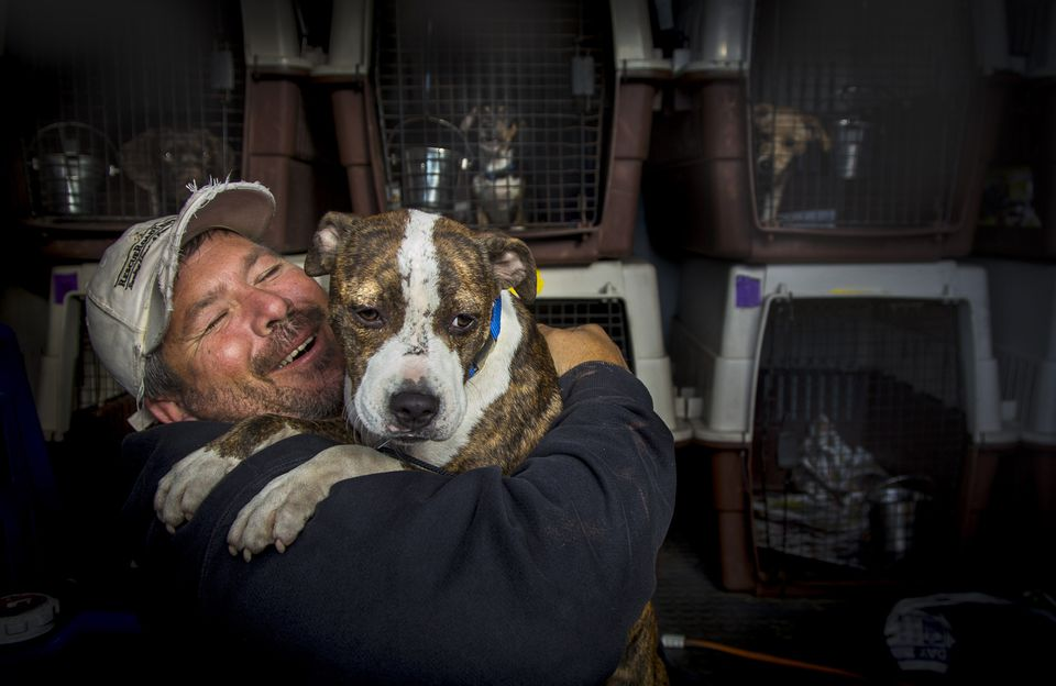 Greg Mahle with rescue dog Champ at a drop-off stop in Putnam, Conn.