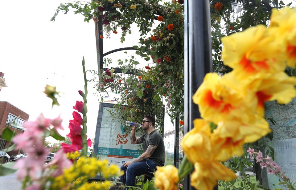 Mark Raymond, of Everett, waits. By Thursday, the day of its planned deflowering, the blooms adorning this Everett bus stop have already started to fade.