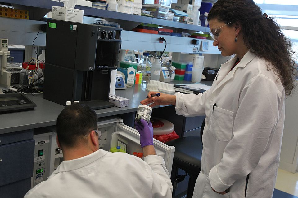 Genzyme researchers in the biotech company's Framingham laboratory.
