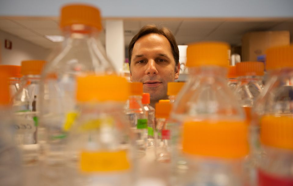 Craig Ceol worked in his laboratory at the UMass Medical School in Worcester, where he and his team are studying skin cancer using zebrafish. The school has been gaining more recognition.