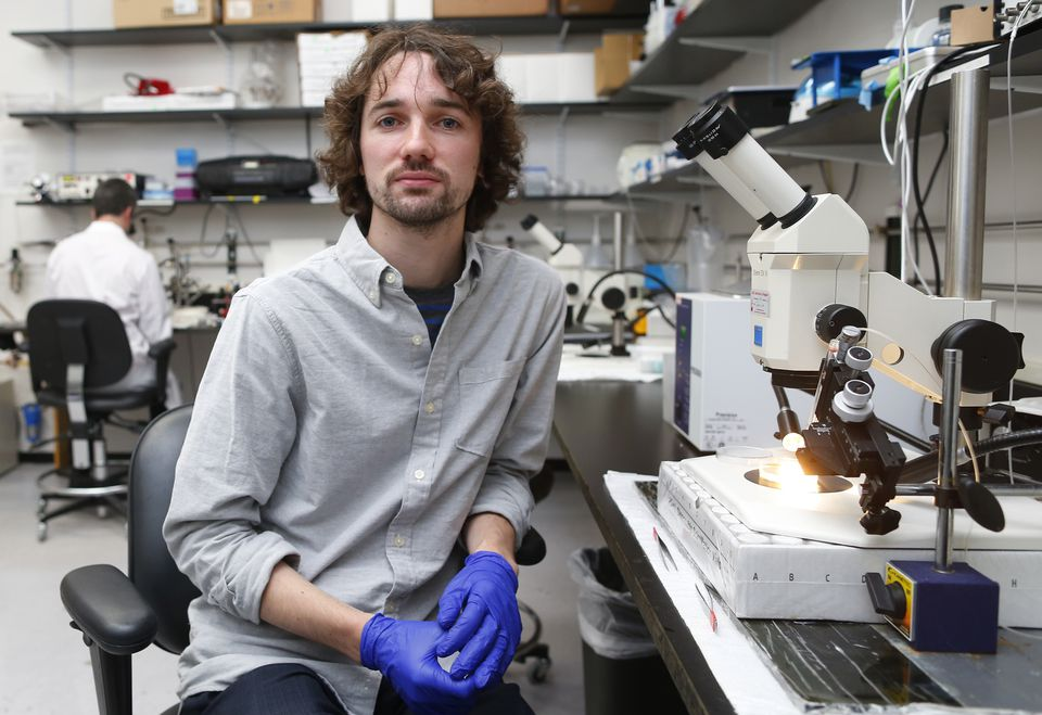 Gary McDowell, 29, a postdoctoral researcher working at the Tufts University lab in Medford, hopes to set up his own lab in a few years.