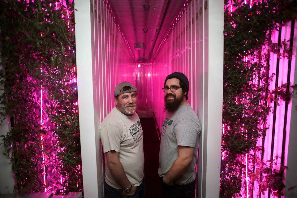 Bobby Zuker (left) and Chris Mutty inside a Freight Farm where crops are grown hydroponically for grab-and-go salads sold at the Coolidge Corner shop Brookline Grown.